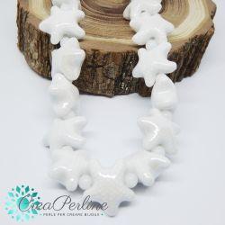 2 Pz perla stella marina in Ceramica Glaze Bianco 20x17mm